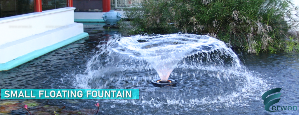 Small Floating Fountain